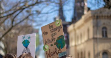 Fridays for future – Schüler kämpfen gegen den Klimawandel