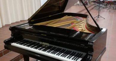 Ein Meisterstück der Klavierbaukunst benötigt unsere Hilfe